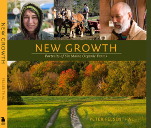 MFFMgrowth_cover