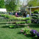 Brunswick-Farmers-Market